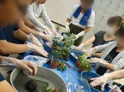 園芸教室の様子